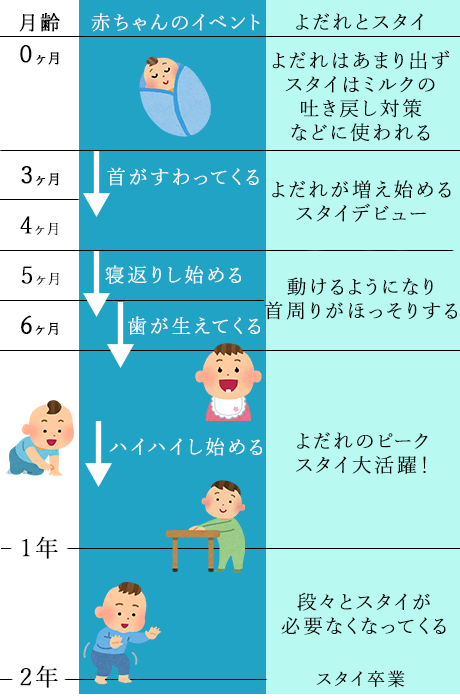 形 さ の 変化 の 大き や 胎児